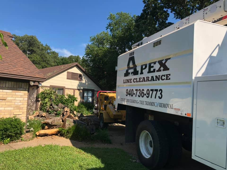 Apex Line Clearance clearing trees in a residential area